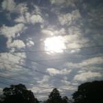 今日は、いい天気です!!