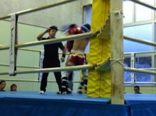 Solid Fist Staff blog-IMG_4312.jpg